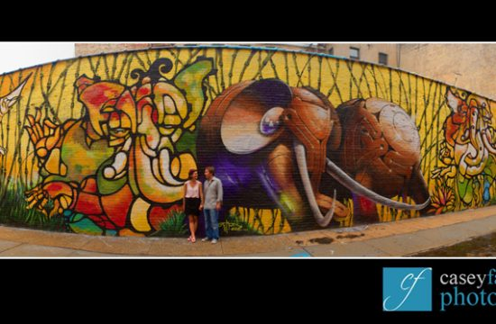 brooklyn engagement photo session with graffiti