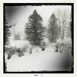 Black and white Michigan snowscape