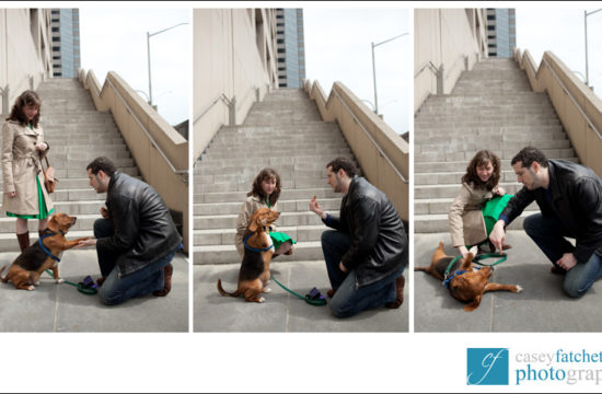 dog tricks engagement session new york city nyc manhattan