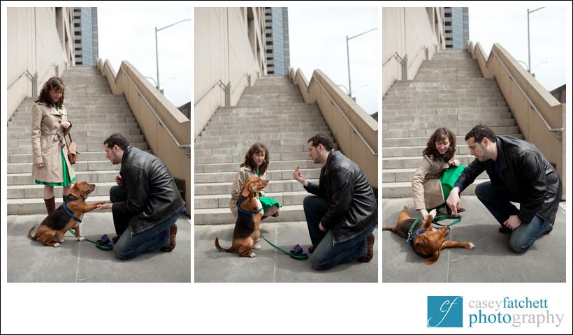 dog tricks engagement session new york city nyc manhattan