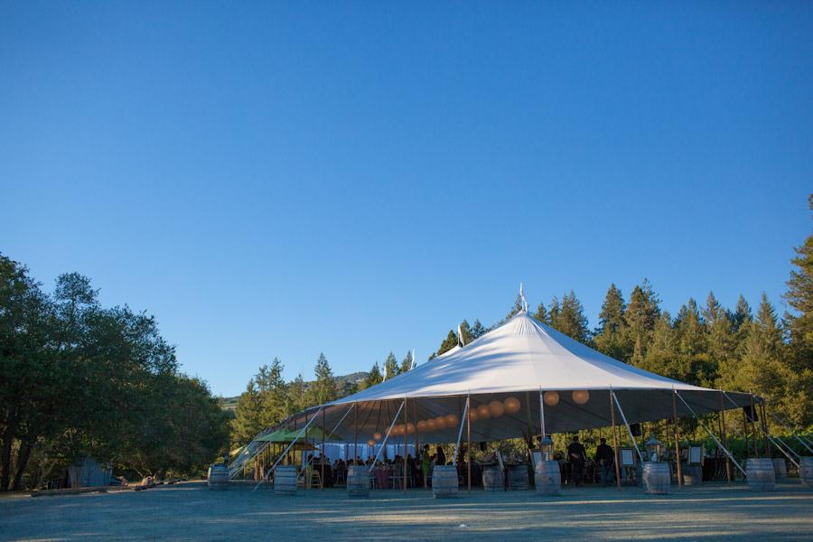 california vineyard wedding reception tent