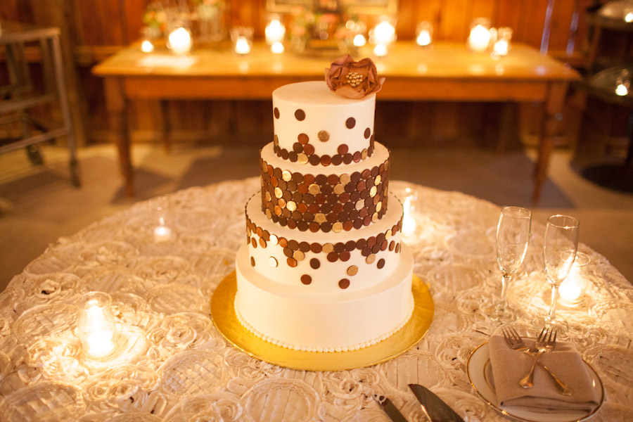 california destination wedding photographer spteampunk wedding cake