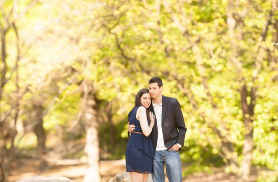 central park engagement love e session new york city by Casey Fatchett