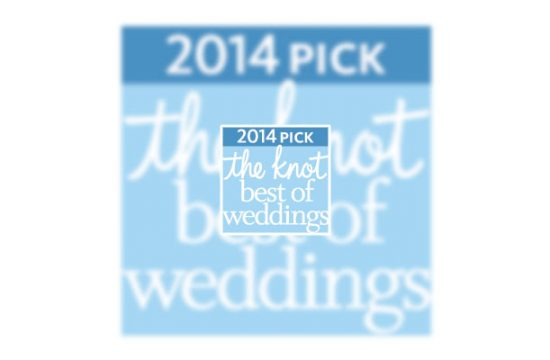The Knot Best of Weddings 2014 Casey Fatchett Photography