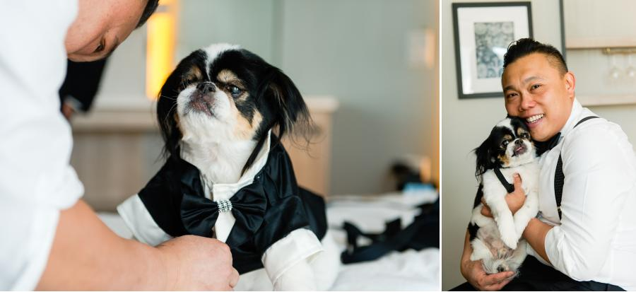 Dog at the wedding by Casey Fatchett Photography - fatchett.com